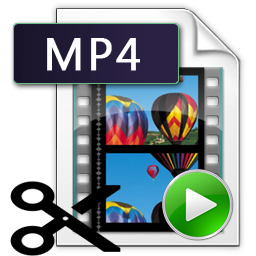 tagliare video mp4 con renee video editor